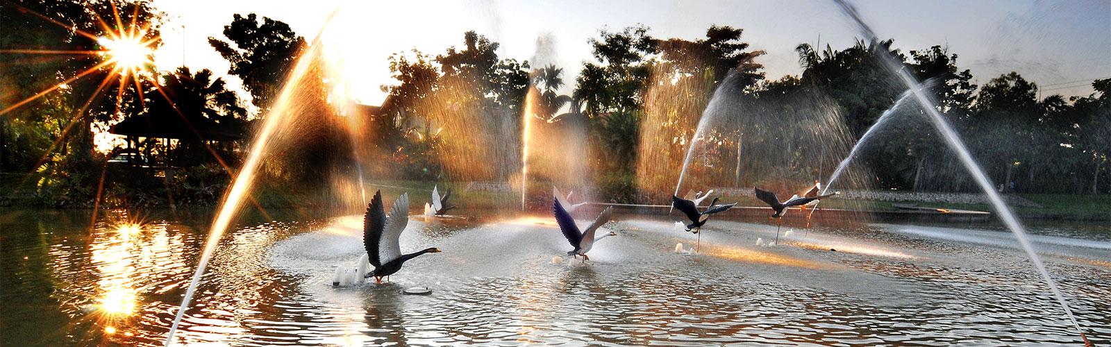 Bandar Botanic
