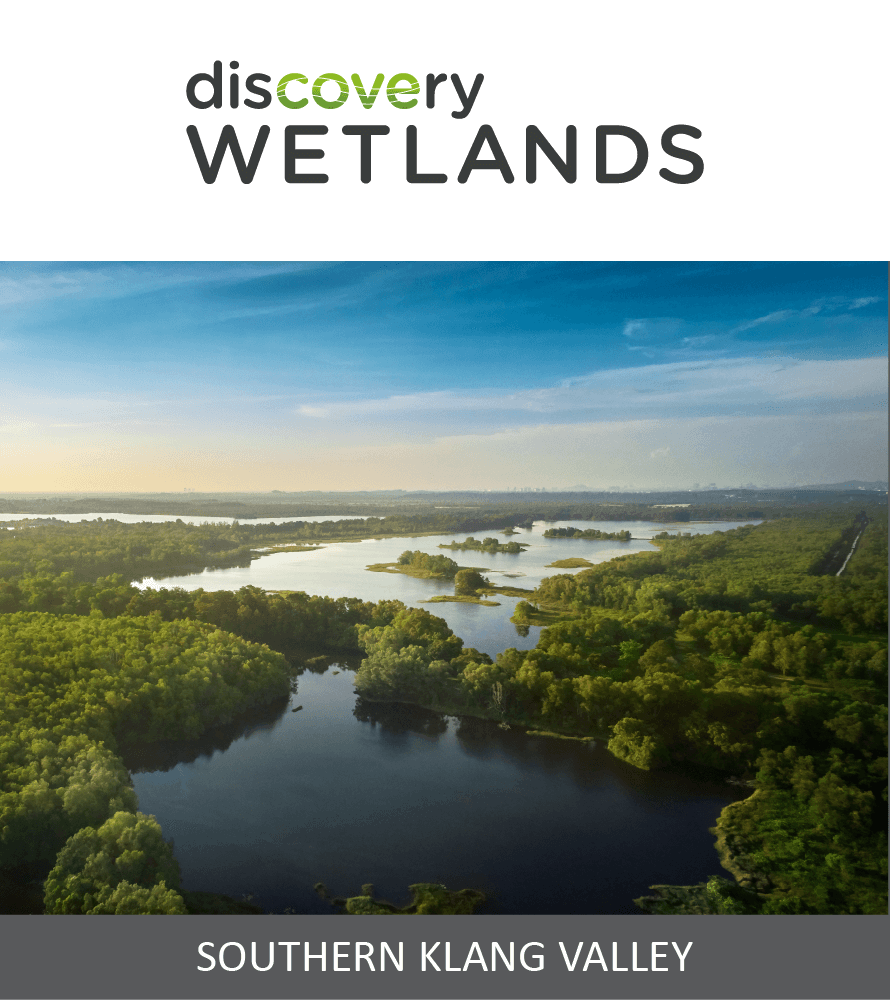Discovery Wetlands