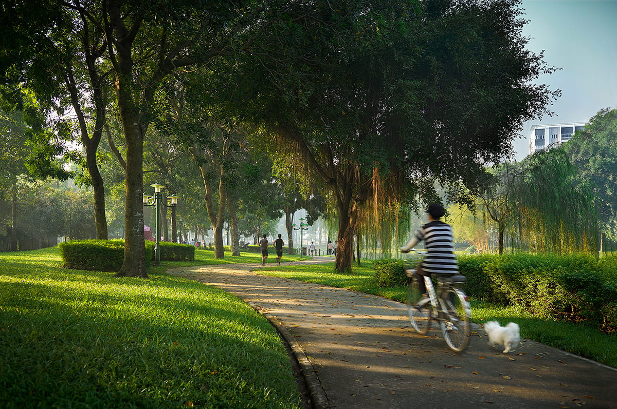 Walkers and cyclists can enjoy lush greenery at Central Park.