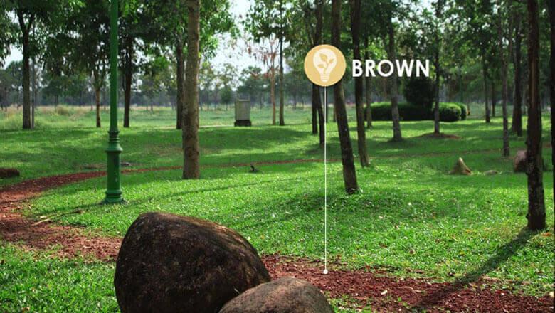 Biodiversity Policy - Celadon City