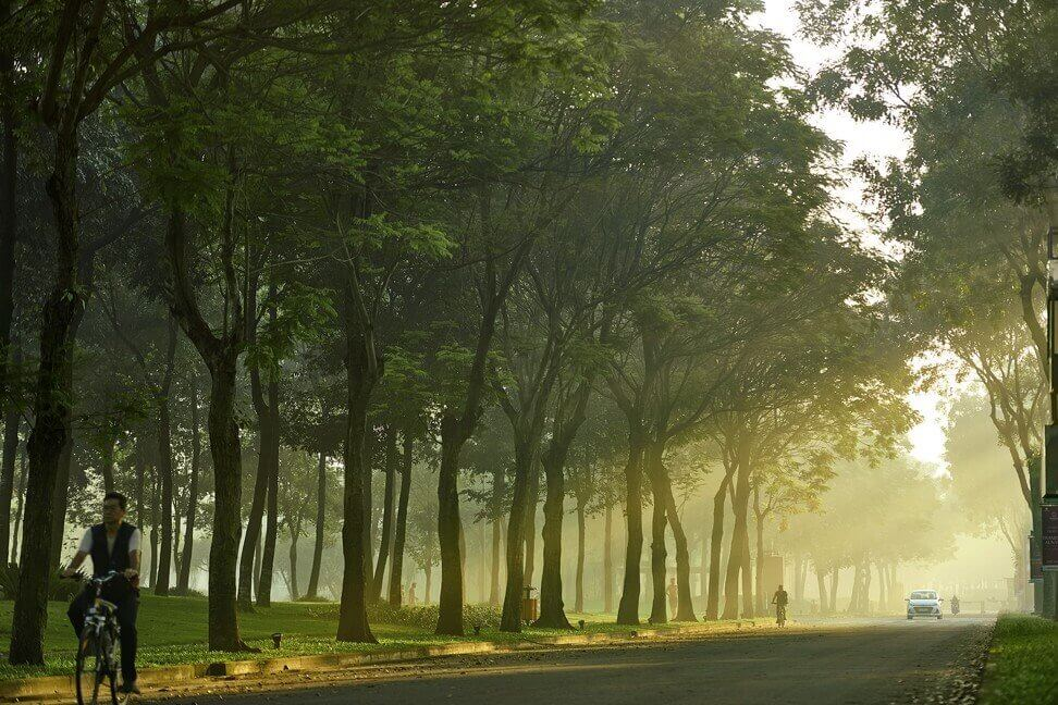 Gamuda Land's townships feature tree-lined streets, as part of its carefully planned, sustainable developments.