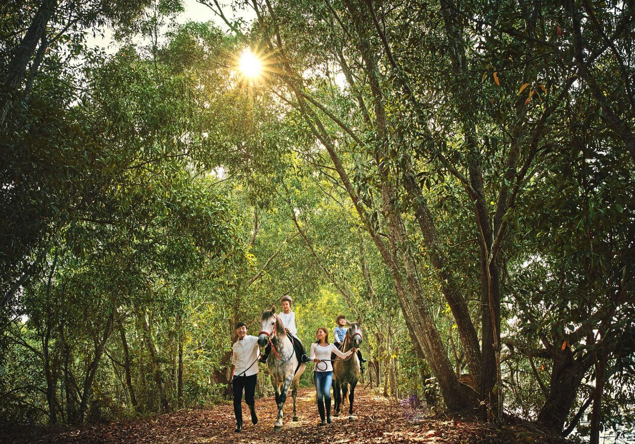 Surrounding Gamuda Cove is the lush greenery of Paya Indah Discovery Wetlands and Kuala Langat Forest Reserve.
