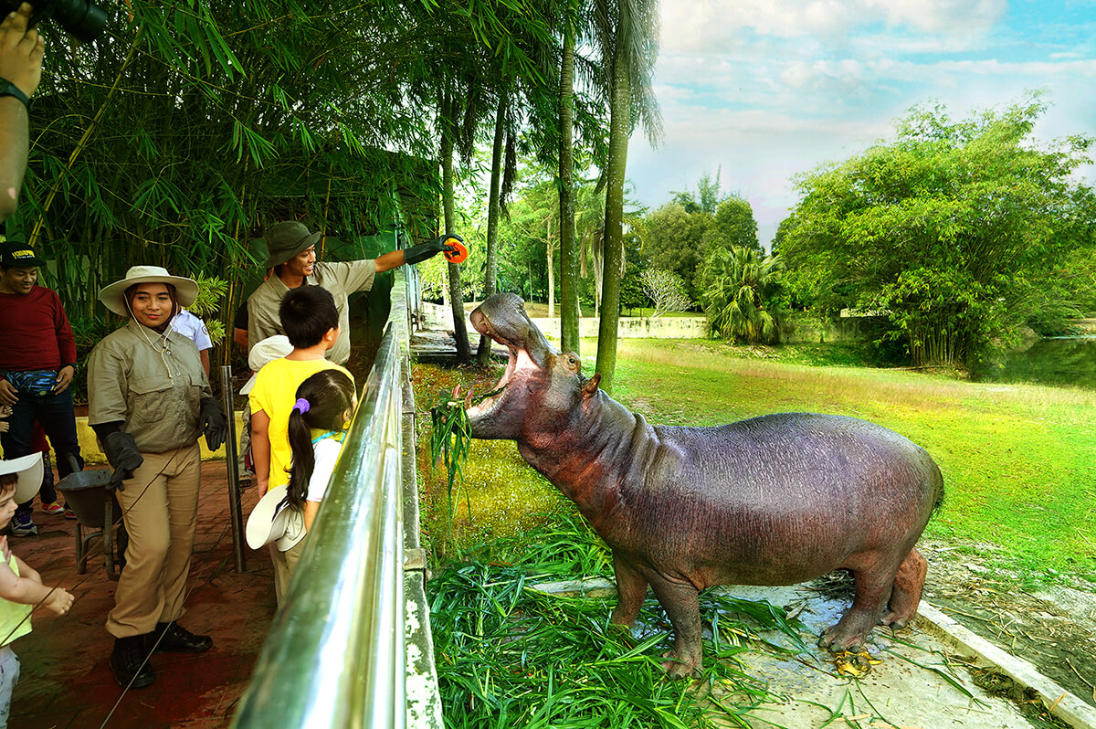 Paya Indah Discovery Wetlands is set to boost eco-tourism in Southern Klang Valley.