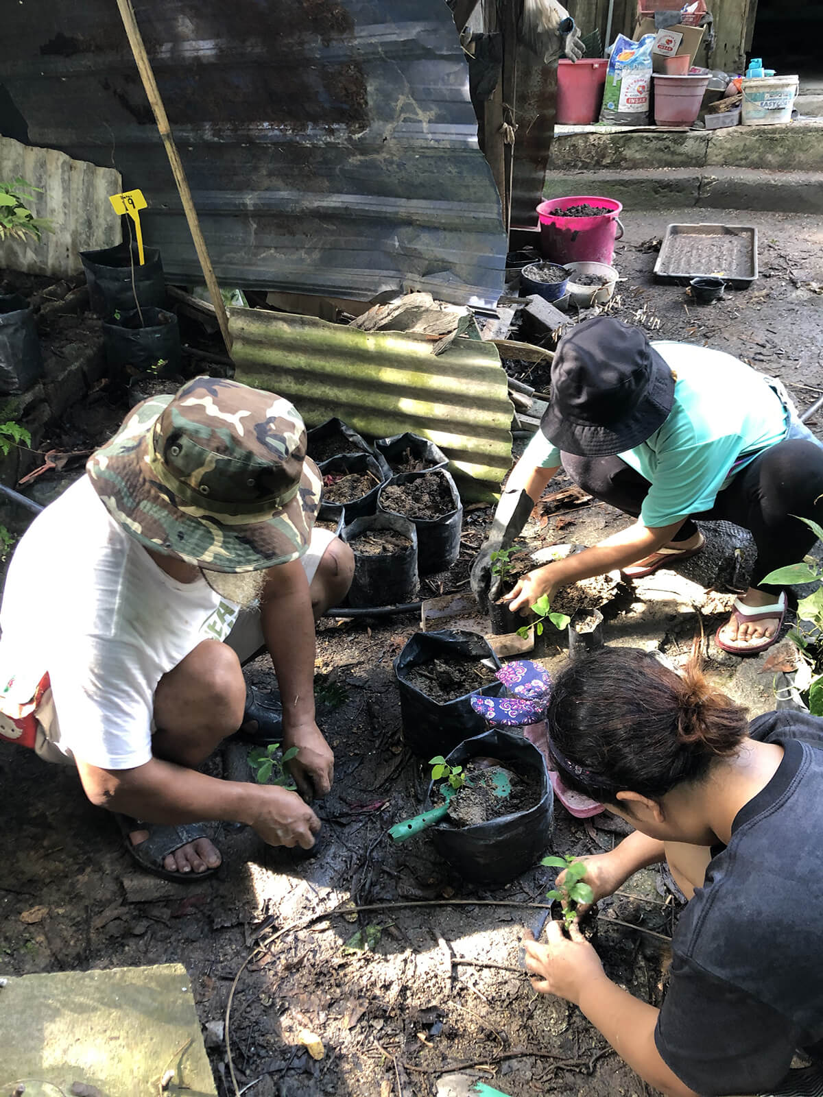 Gamuda Parks' Farm-to-Mouth project helps Orang Asli plant their own edible gardens, harvesting enough for the family and to sell.